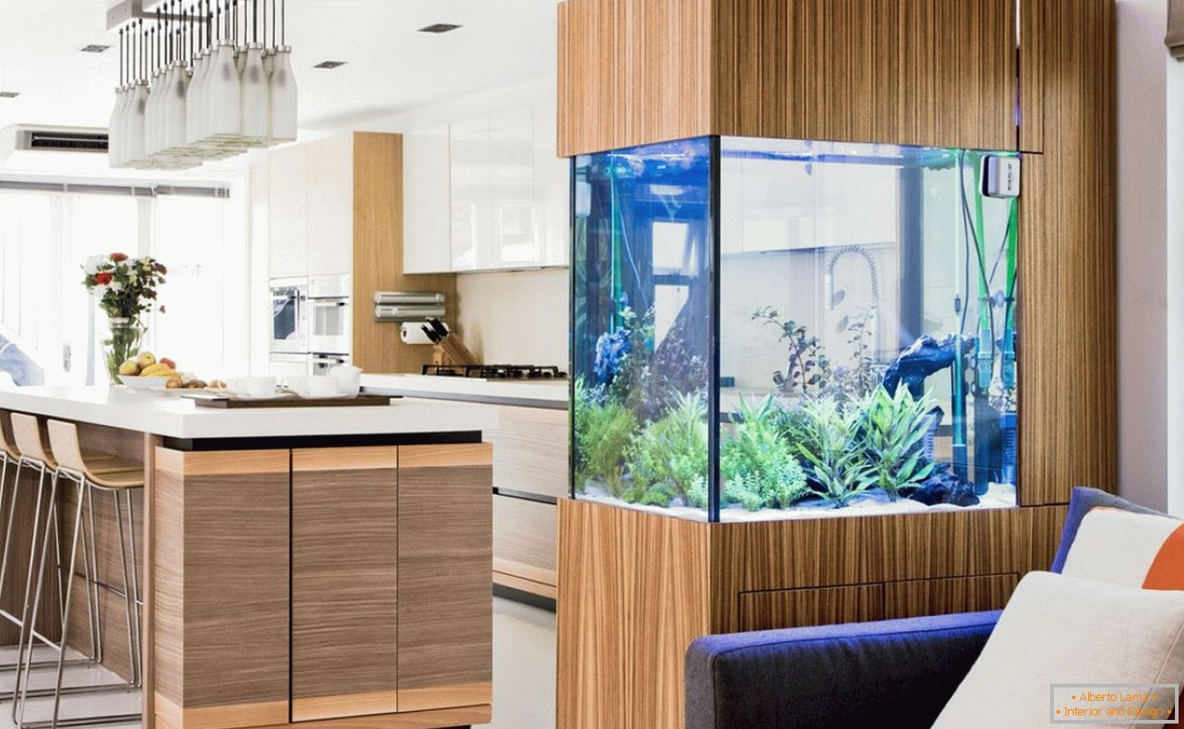 Partition mit Aquarium в интерьере
